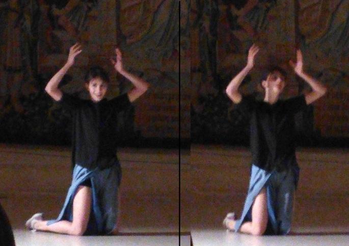 bannière danseuse-surdeau